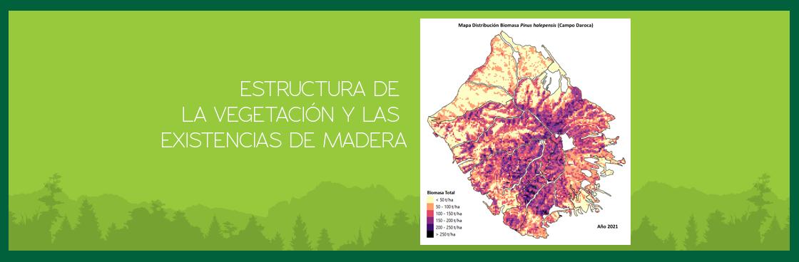 El Grupo Operativo Prominifun evalúa la estructura de la vegetación y las existencias de madera en todas las comarcas forestales del proyecto
