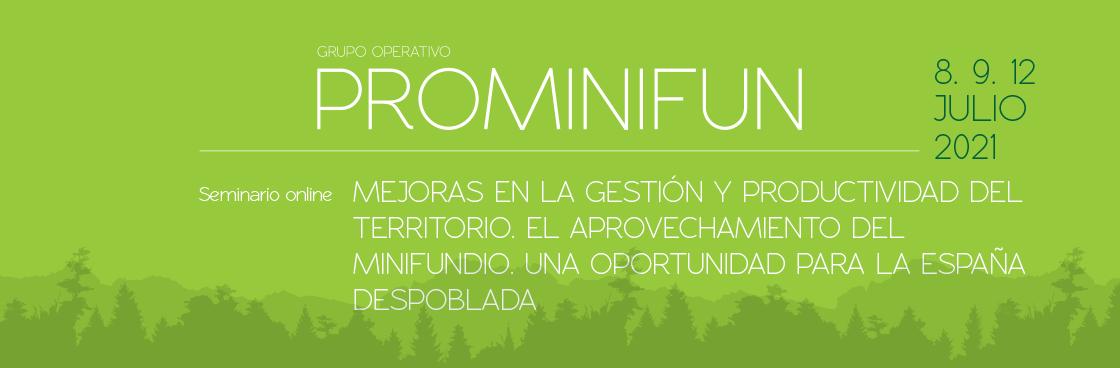 Mejoras en la gestión y productividad del territorio. El aprovechamiento del minifundio. Una oportunidad para la España despoblada