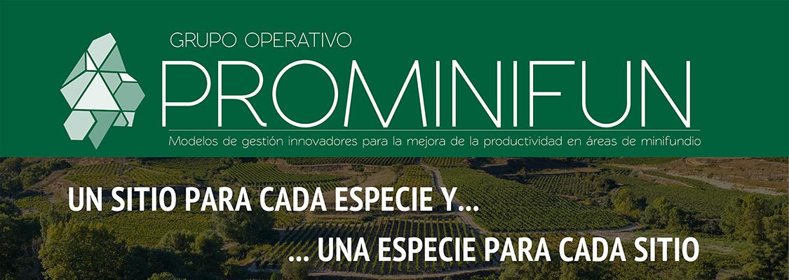 Exposición itinerante GO Prominifun
