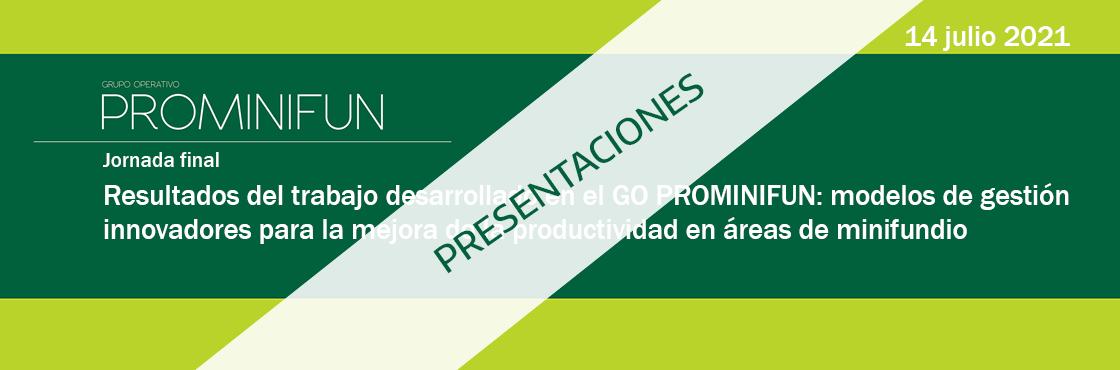 Disponibles las presentaciones de la jornada final de presentación de resultados del GO PROMINIFUN
